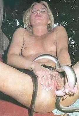 Mujeres tienen serpientes en el coño porno Serpientes Follando Conos Mujeres Fotos Gifs Porno Fotos Xxx Animadas