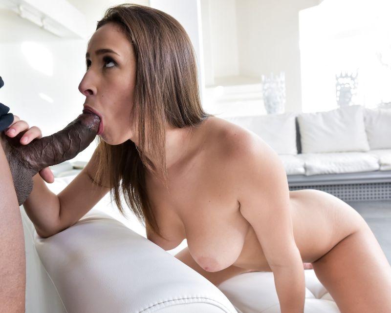 Ashley Adams porno interracial pollas negras, imagenes pornografia, estrellas del porno